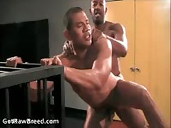 Kamrun And Rocco Martinez In Exciting Free Gay Porno Suck And Fuck 14 By GetRawBreed