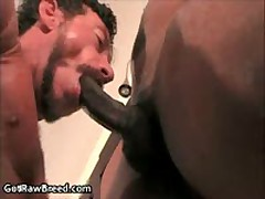 Kamrun And Ray Dalton In Horny Gay Porn Fucking And Sucking 2 By GetRawBreed