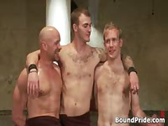 Ned And Chad In Very Extreme Gay Porn Bondage 19 By BoundPride