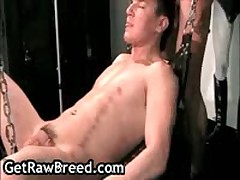 Austin Martin And Caleb Lucas Suck And Fuck 5 By GetRawBreed