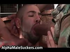 The Most Horny Gay Fucking And Sucking Porno 14 By AlphaMaleSuckers